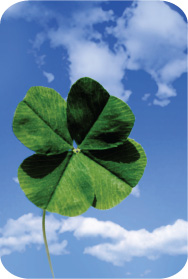 Does your marketing strategy rely on luck?